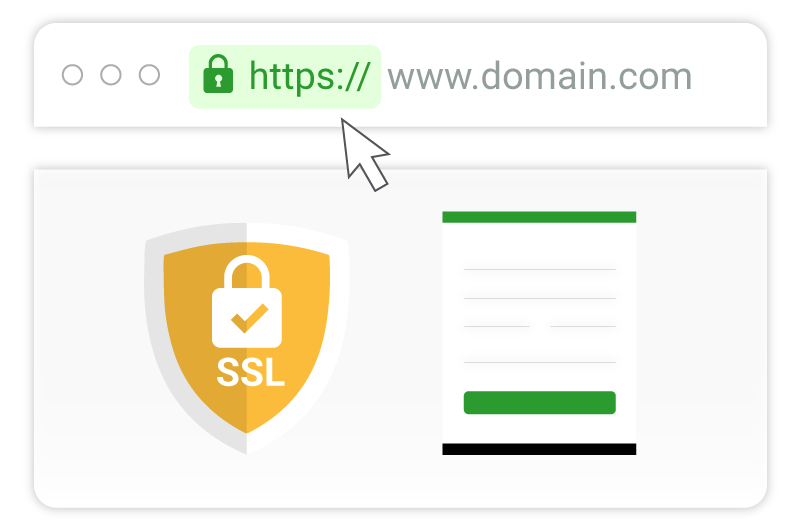 What is the SSL certificate warranty?